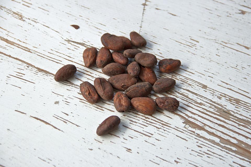 cocoa-bean-1282889_960_720